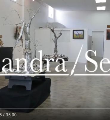 Sandra Sell Video Tour